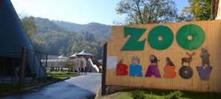 Gradina Zoologica Brasov Turism Agrement si Distractie