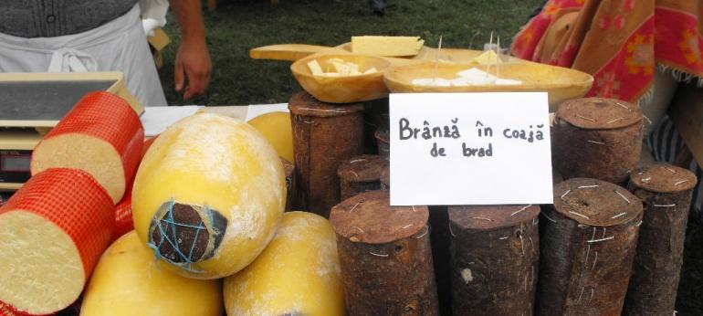 Ravasitul oilor & Festivalul branzei si al pastramei